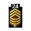 Master Sergeant 1 Star