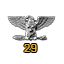 Colonel Service Star 29